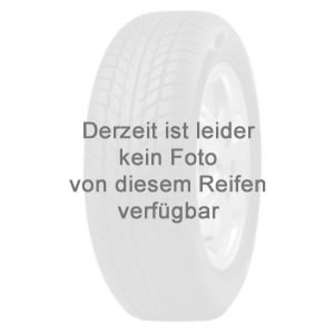 Seiberling VAN Winter 3PMSF 195/75 R16 107R/105N R
